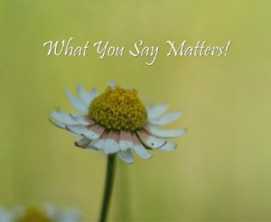 Blog Image-  What-You-Say-Matters